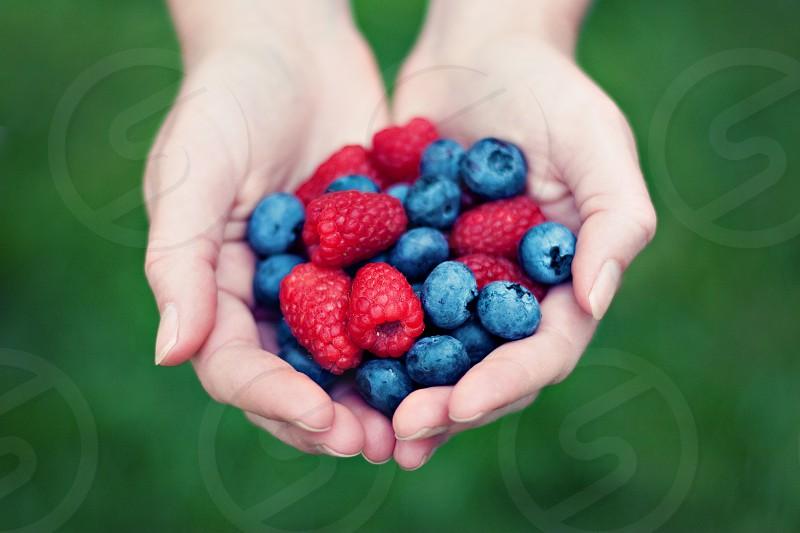 Blueberries raspberries farm fresh produce photo