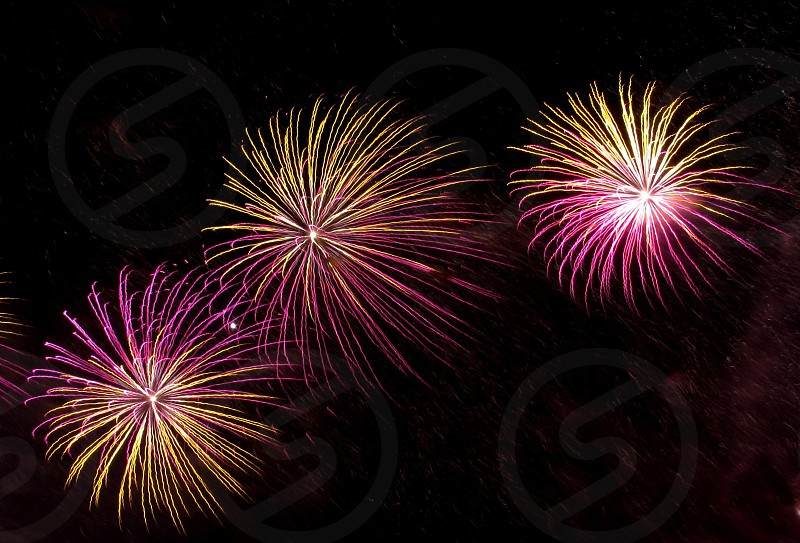 pink and yellow fireworks display photo