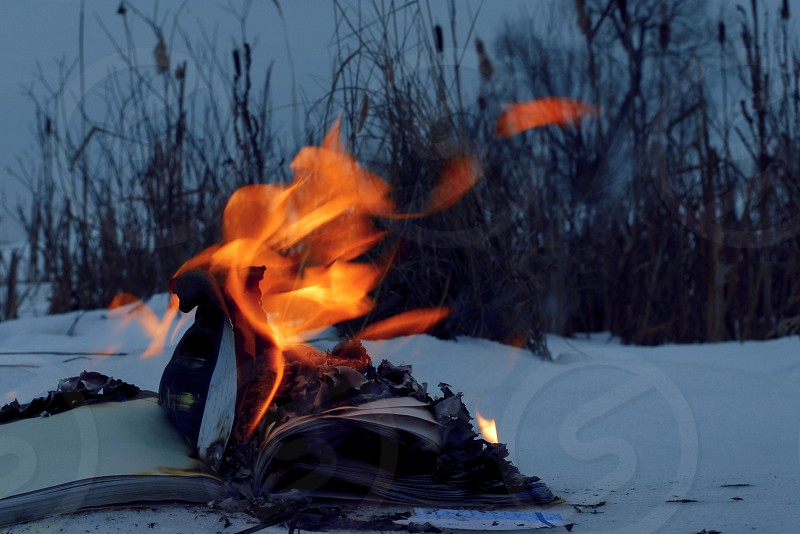 book in the fire photo
