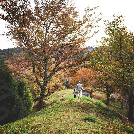 Yoshino mountain. Yoshino-Kumano National Park of Japan. Nara. photo