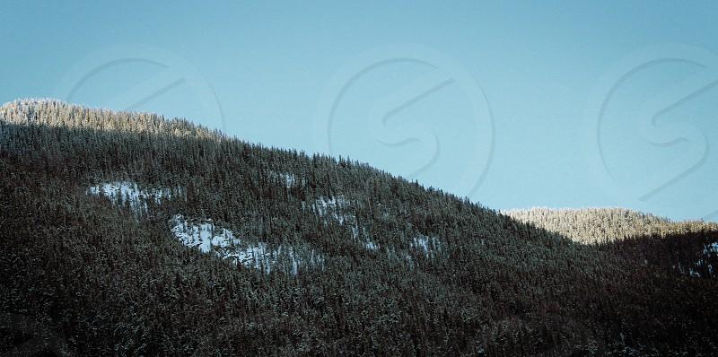 Banff mountains forest trees snow winter Alberta Canada travel explore roadtrip balance photo