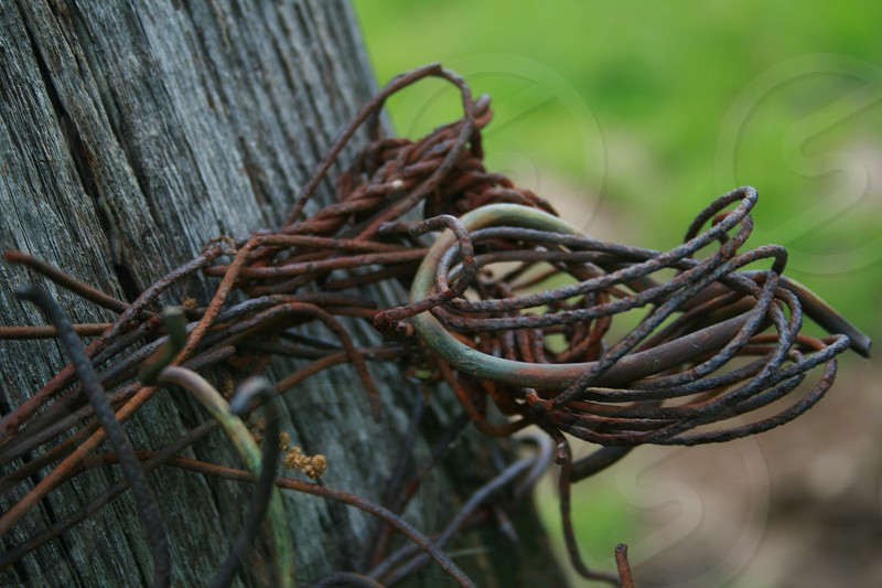 Fence post wire tangled tied nails hooks photo