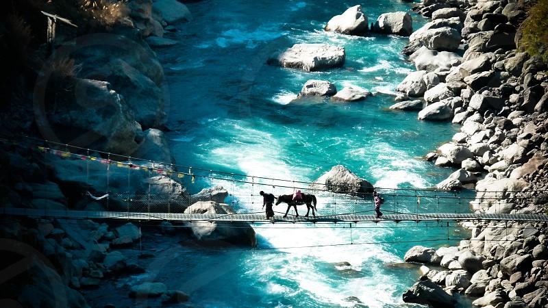The bridge photo