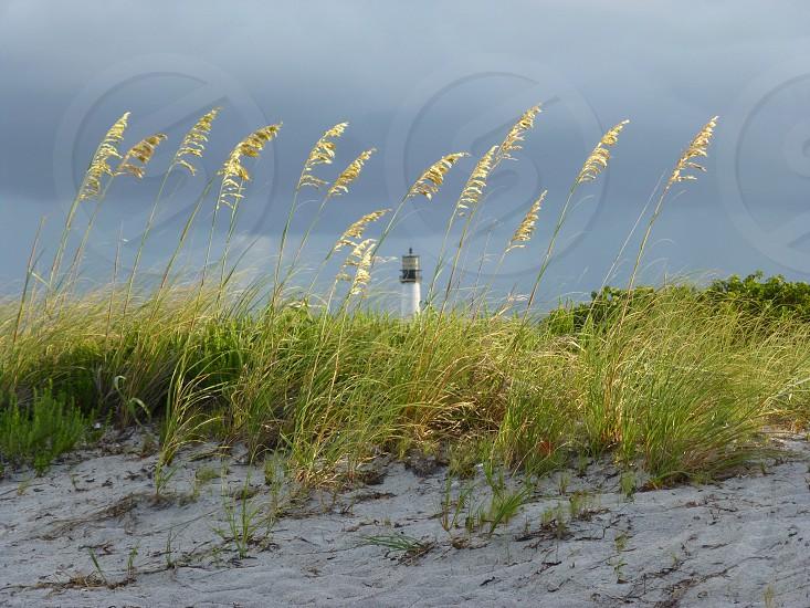 Bill Baggs Cape Florida State Park photo