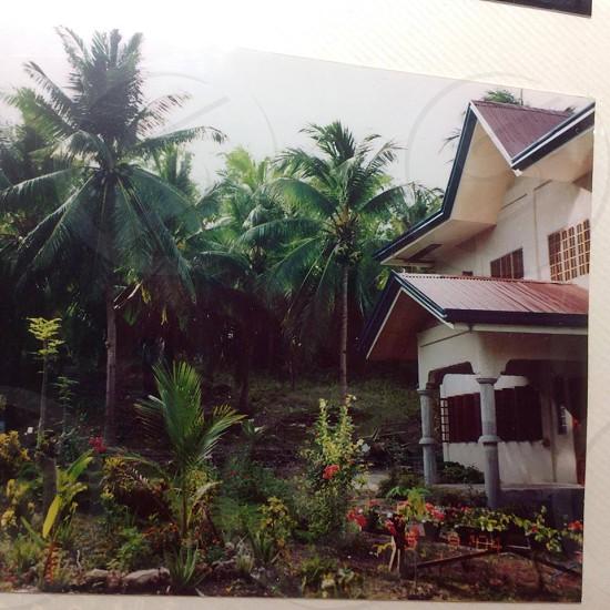 Casay Argao paradise photo