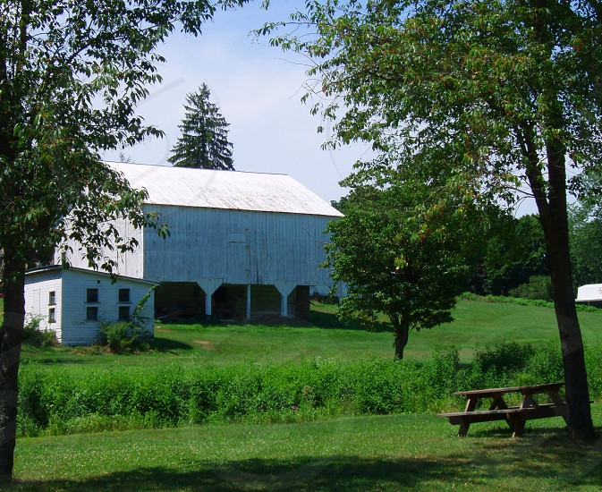 Amish Barn photo