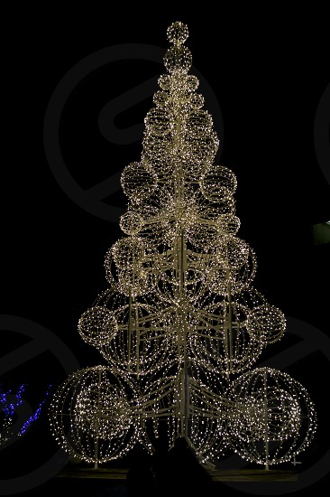 Lights in the form of a Christmas Tree. photo