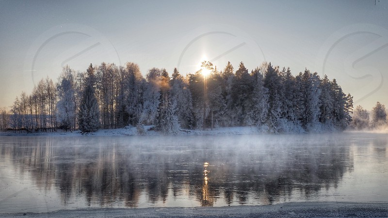 Winter winter wonderland Sweden Gustafs river water reflecting reflections frozen frozen trees frosty sunlight through trees cold serenity calm tranquility  photo