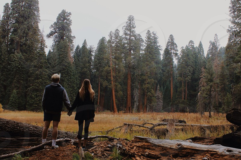 man and woman holding hands in the woods photo