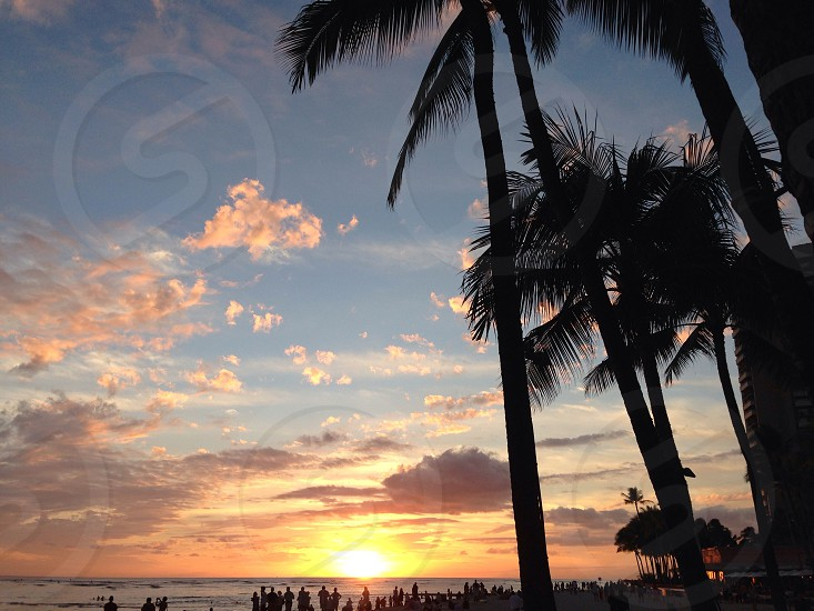 sunset view on beach photo