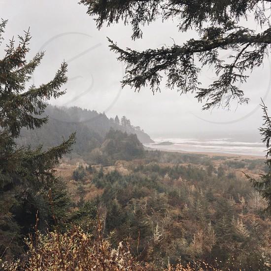 Washington Pacific Northwest ocean beach travel nature adventure wanderlust  photo