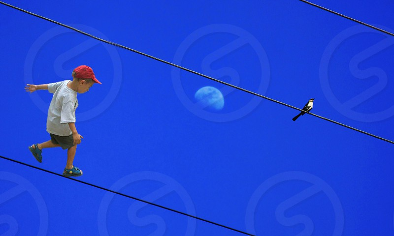 In an imaginary world a little boy walks a wire as a bird sits on another above him. photo