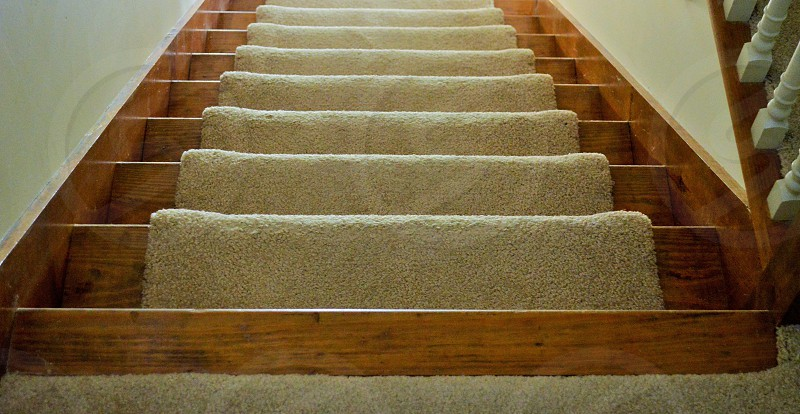 brown wooden staircase with carpet photo