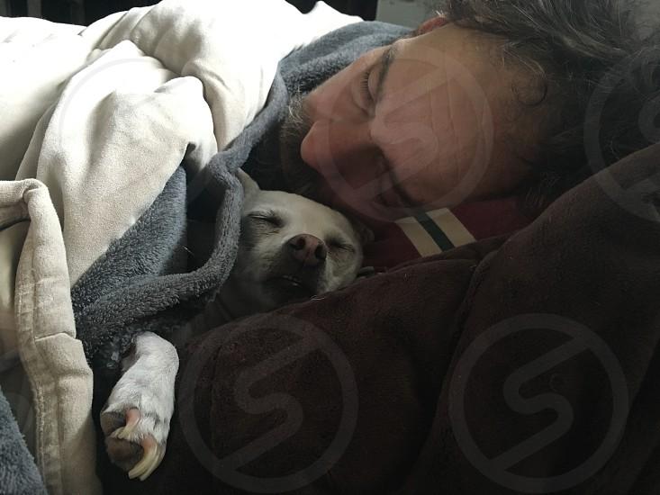 man and his dog sharing bed photo