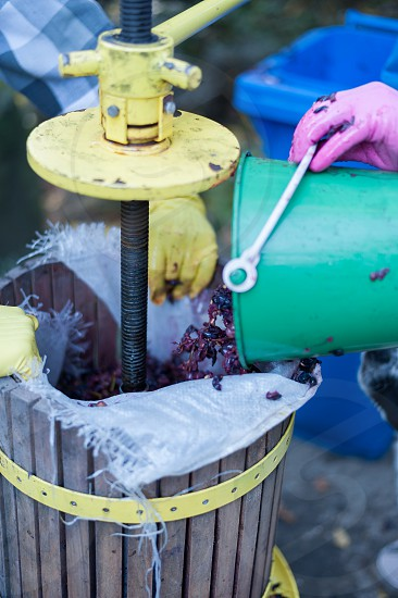 Details of winemaking process photo