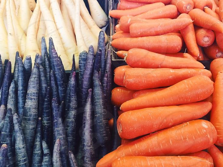 Orange and purple carrots parsnip photo