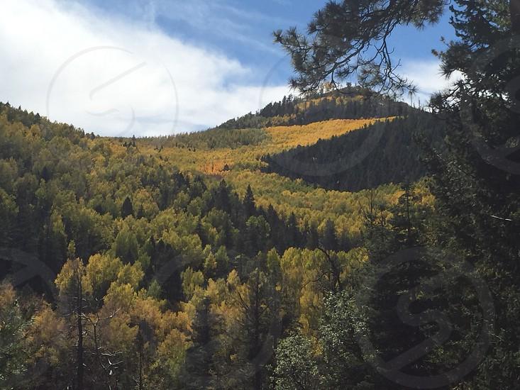 Eagle Peak Reserve NM 2014 photo
