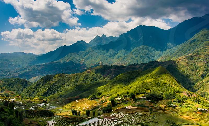 Terraced Rice Fields in Vietnam photo