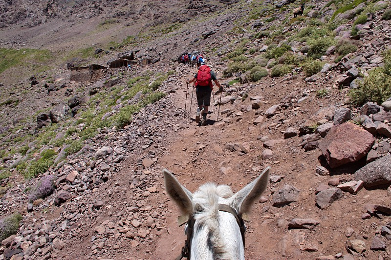 Riding mule in High Atlas mountains in Morocco photo