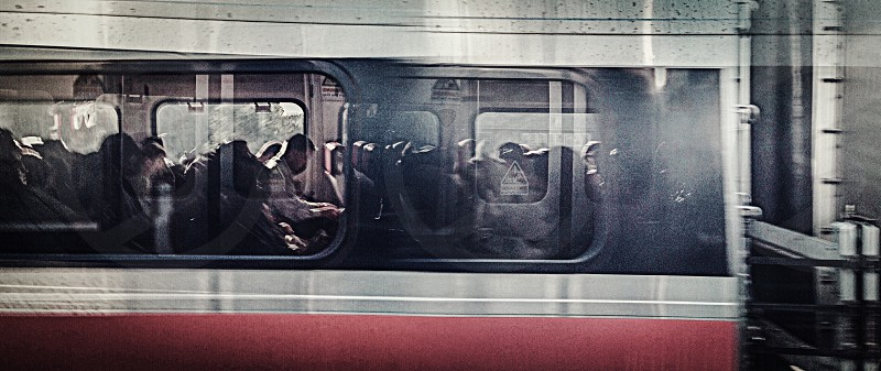 public train grey with red stripe photo