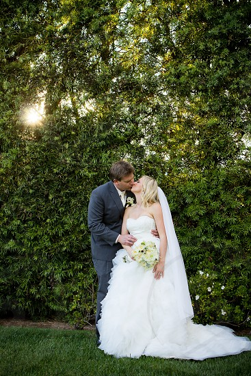 man in gray suit kissing woman in white wedding dress background of green leaf trees photo