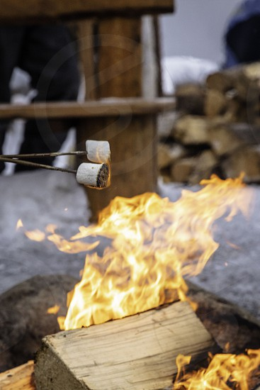 toasting marshmallows around fire in snow photo