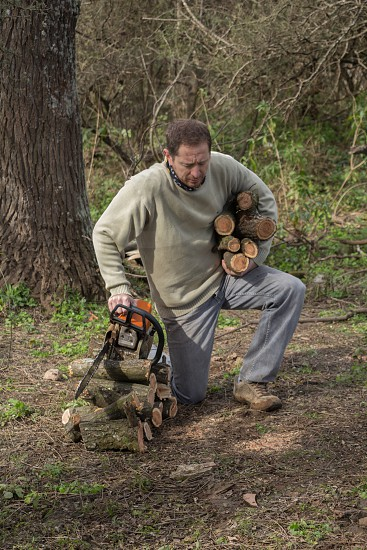 Woodcutter cutting logs in the forest photo
