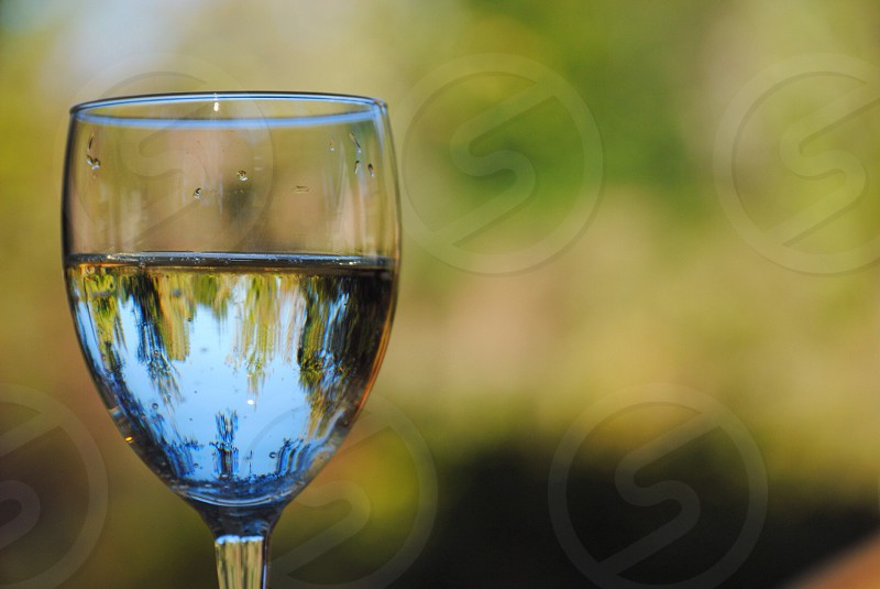 clear wine glass with white wine photo