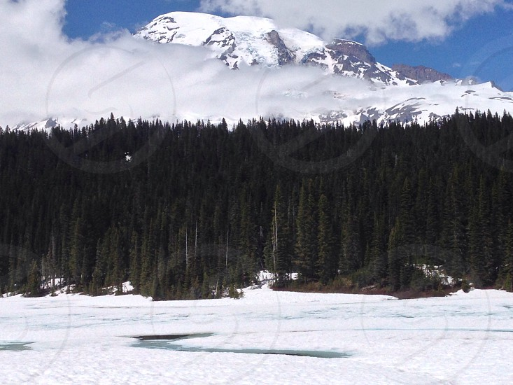 Mt. Rainer 2014. Reflection lake photo