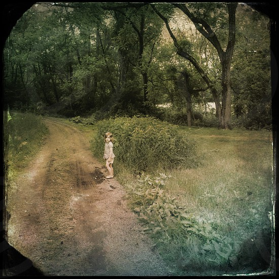 girl standing on pathway surrounded by tree photo