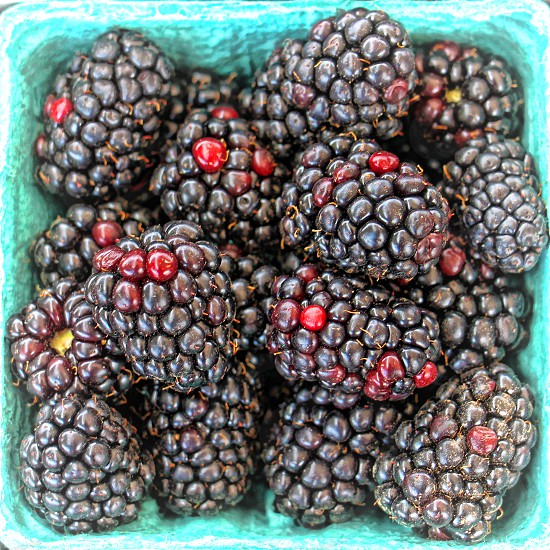 Close-up view of a carton of fresh blackberries. photo