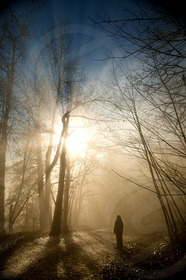 Woman gazing into the sun photo