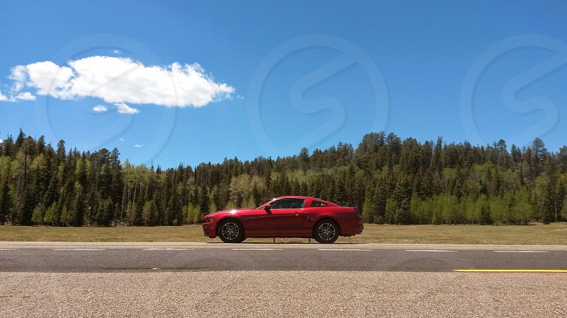 Ford Mustang coupe on the road to the Grand Canyon North Rim photo