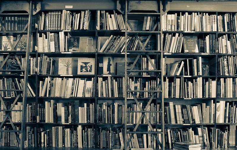 Bookshelf in a local bookstore photo