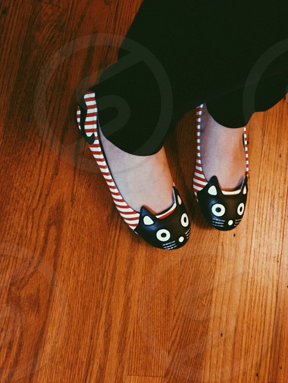 black red and white striped kitty flats photo