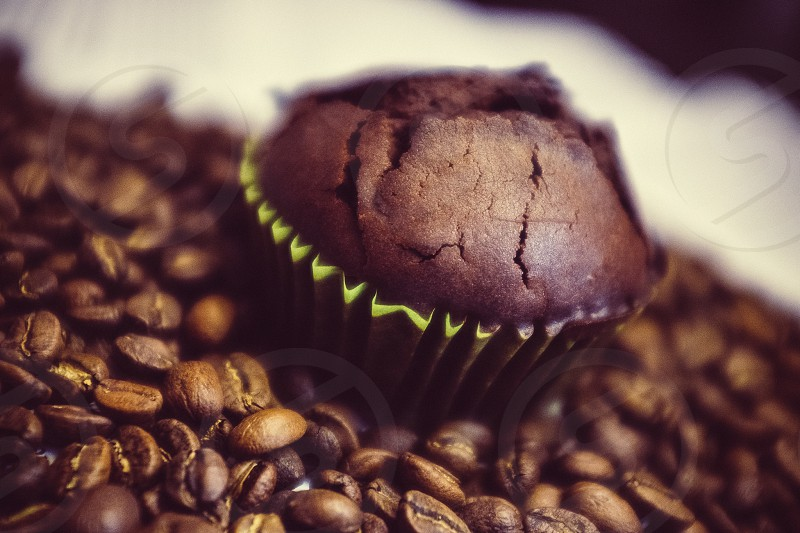 brown cupcake on coffee beans photo