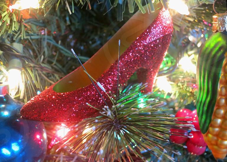 Glittery red high heeled shoe in tree photo