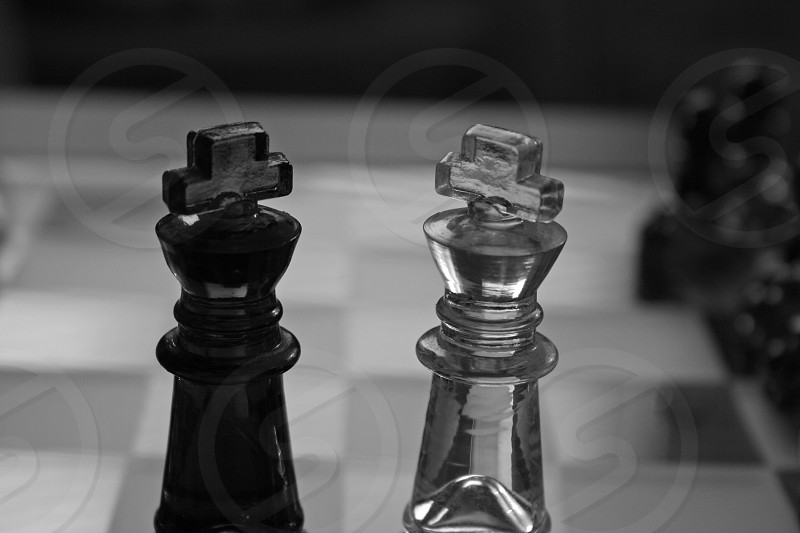 Two Kings Meet black and white photo