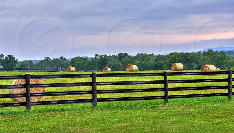 Hay bails on the farm photo