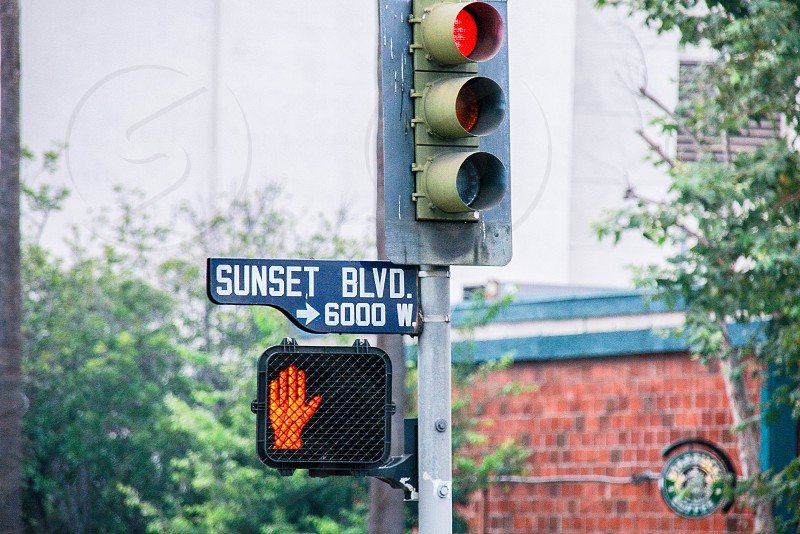 Sunset Blvd. photo