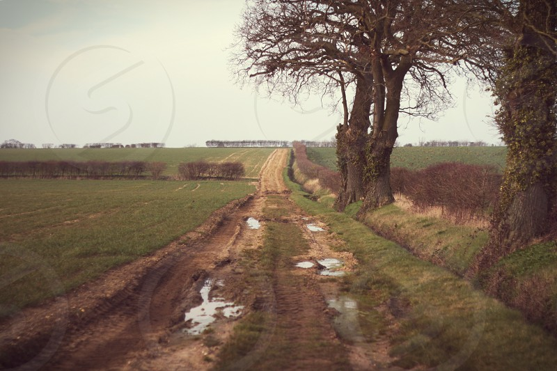 brown dirt road photo
