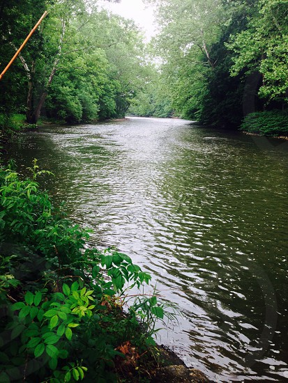 Rolling river in the woods photo