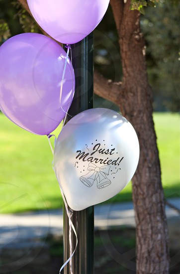 Wedding Balloons photo