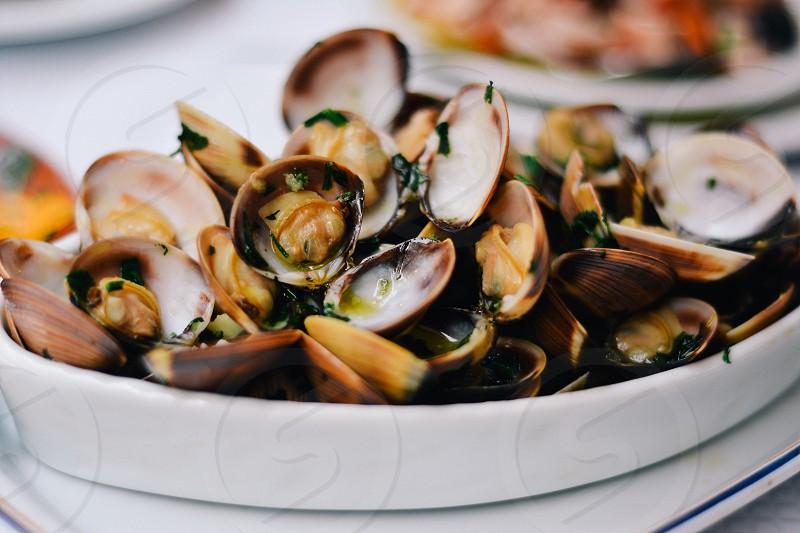 Portuguese dishes close ups photo