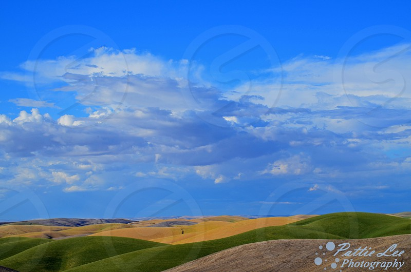 Storm clouds in the distance over the wheat fields photo