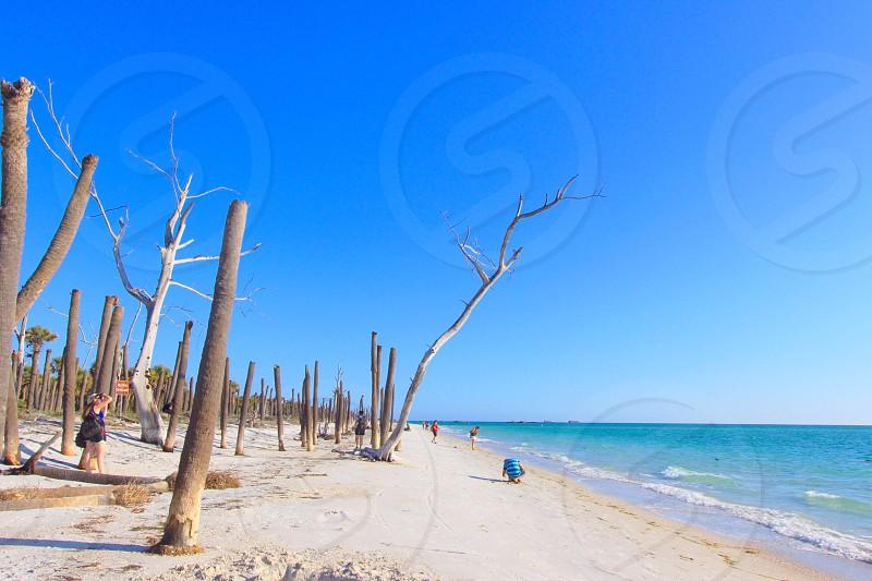 Florida beaches landscape ocean photo