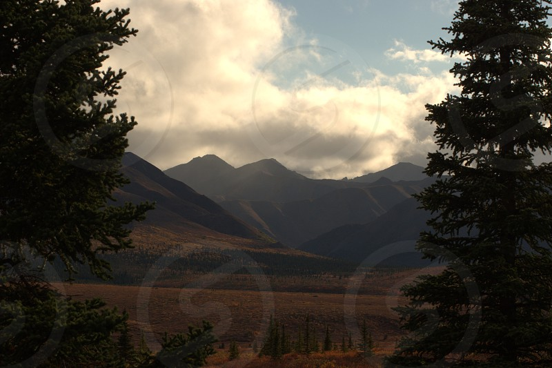 Alaska Denali photo