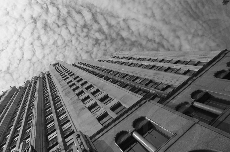 fisher building... photo