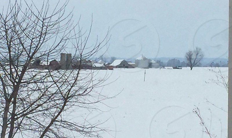 Farm view snow scene cold crops photo