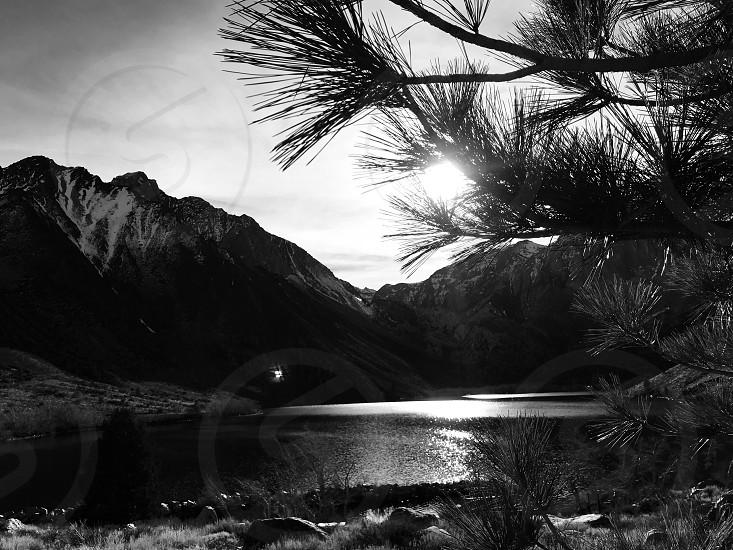 Convict Lake Mammoth trees peaceful hike surreal peaceful lake  photo